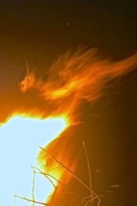 My Fire Drake